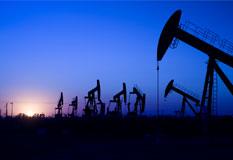 A_global_petrochemical_company