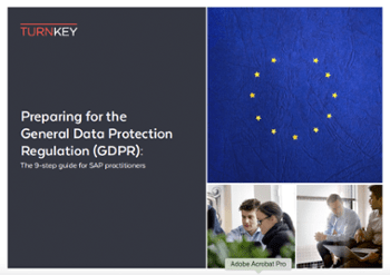GDPR 9 point plan SAP GRC
