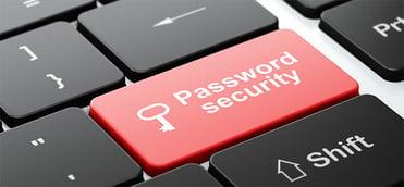 password4.jpg
