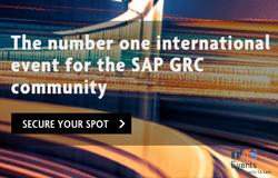 SAP internal controls thumbnail