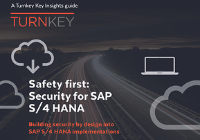 Safety first Security for SAP S4 HANA cover 3